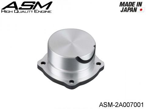 ASM High Quality Engines ASM-2A007001 ASM COVER PLATE ASM21 Type 1